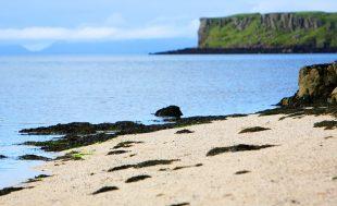 Cruises Scotland, Cruises West Coast Scotland
